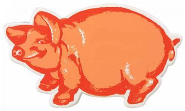 Schweinchen-Magnet