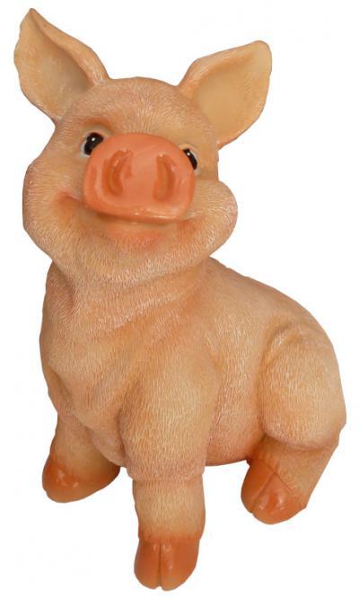 Schweinchen 'Pinki'